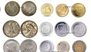Compravendita monete online dating
